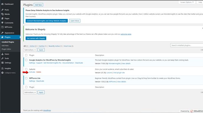 Wordpress Dashboard: Plugins